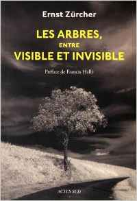 les-arbres-entre-visible-et-invisible