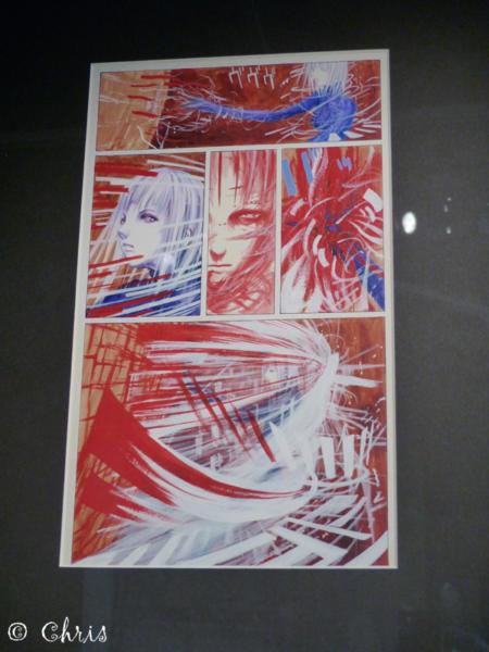 P1370739 copie